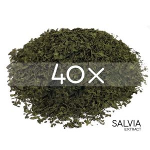 salvia divinorum extract for sale